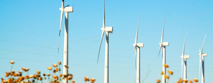 Gobierno Colombiano publica pliegos para primera licitación de energías renovables a largo plazo