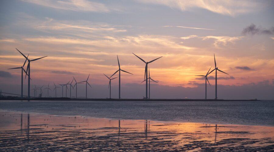 promoción de energías renovables